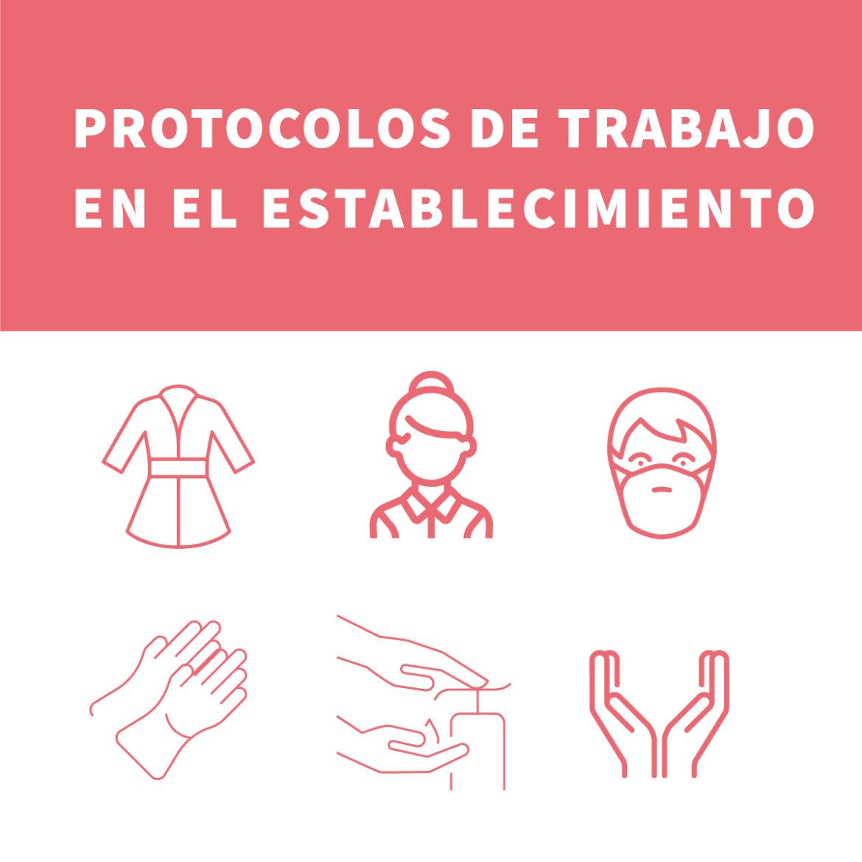 Protocolos de trabajo en el establecimiento